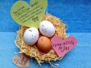 ¡Que nido más alegre y triplemente hermoso!
